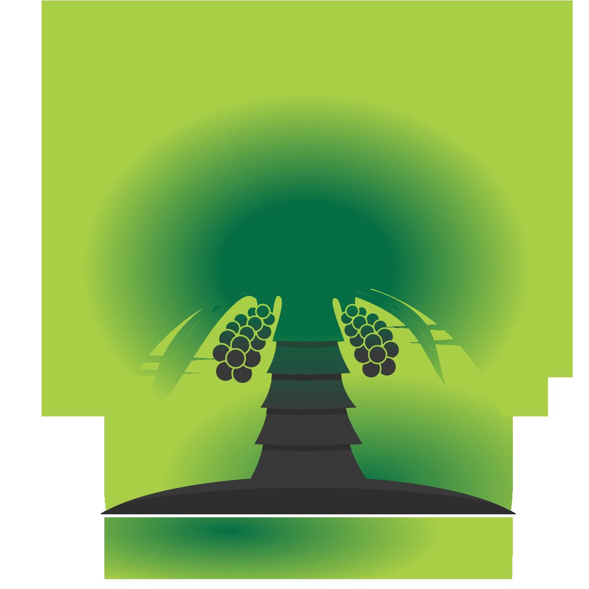 Date Palm Media